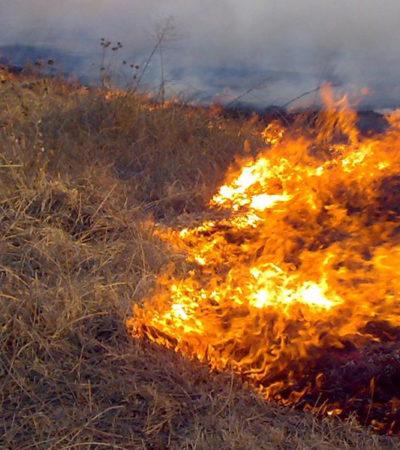 Lanzan alerta en redes por desaparición de 3 jóvenes, pero estaban presos por provocar un incendio