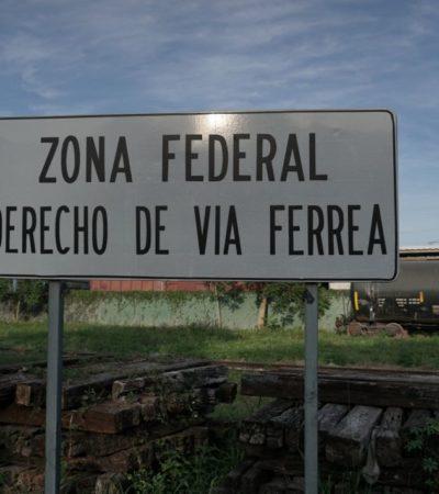 FOTOS | Así luce actualmente la ruta del Tren Maya
