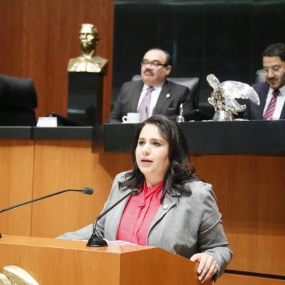 """""""Incremento a los combustibles en 2019 representa un golpe al bolsillo de las familias"""": Mayuli Martinez"""