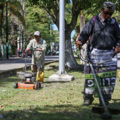 Personal del Ayuntamiento de Cozumel trabaja para restablecer servicios e imagen turística de la isla tras temporal