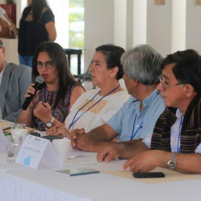 Analiza Gobierno de Solidaridad mejores proyectos para mitigar llegada de sargazo