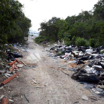 Activista denuncia basurero clandestino donde podrían estar involucrados hoteles de la Riviera Maya