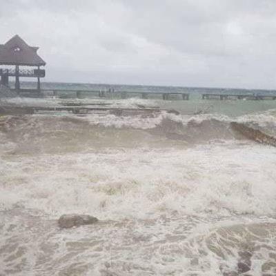 Dejó Norte fuertes daños en delfinario en Cozumel; empresa niega fuga de ejemplares