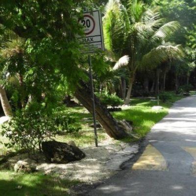 Semarnat somete a consulta pública al hotel Dorado, que se adelantó a realizar trabajos de impacto ambiental y fue sancionado por Profepa