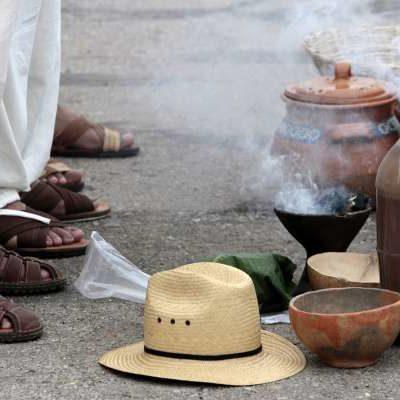 Desestima AMLO críticas de ambientalistas opositores al proyecto del Tren Maya