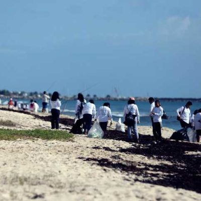 Más de 400 personas participan este domingo en limpieza de playas con motivo del Día Mundial de la Educación Ambiental en Puerto Morelos