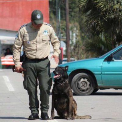Rescatan a madre e hija plagiadas en Veracruz gracias a llamada anónima; hay dos detenidos