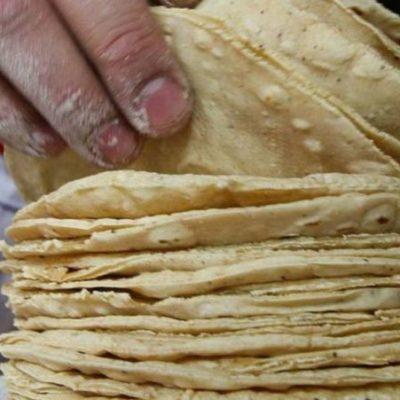 Incrementará el precio del kilo de tortillas en Chiapas ante costo de harina, energía eléctrica y gas