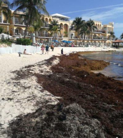 Por sargazo, ocupación hotelera en la Riviera Maya sufrió caída durante el 2018 y cerró con sólo el 80 por ciento