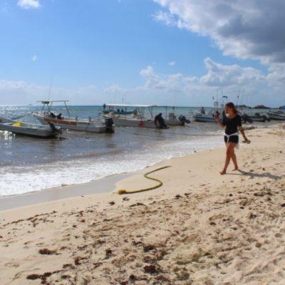 Paso de frentes fríos por Playa del Carmen alejan el sargazo y recuperan arenales