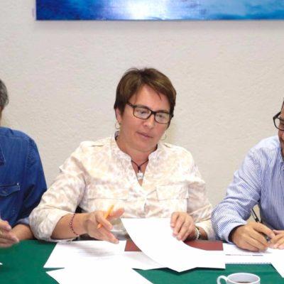 Participa Laura Beristaín con Fonatur en revisión de Plan de Movilidad del Tren Maya