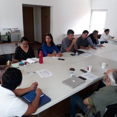 Analizarán propuesta de Reglamento de Ecología, Mitigación y Adaptación de Cambio Climático en Tulum