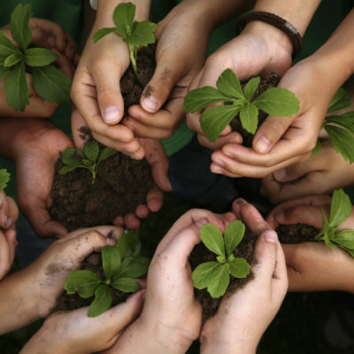 Mantienen programa de Educación Ambiental en escuelas públicas de Cancún