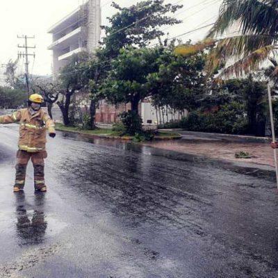 Reportan saldo blanco en Cozumel por paso del frente frío número 31