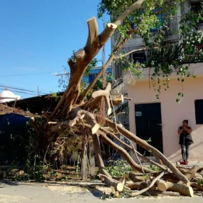 Afectaciones por frente frío no. 31 todavía se reportaron este lunes en Playa del Carmen