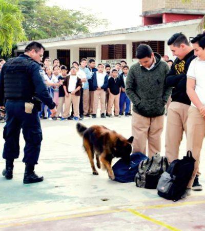 HABRÁ REVISIÓN DE MOCHILAS: Inicia Ayuntamiento de Tulum operativo 'Escuela Segura'