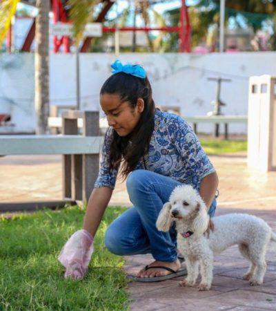 Ayuntamiento de Isla Mujeres implementa el programa de concientización 'Tu mascota, tu responsabilidad'