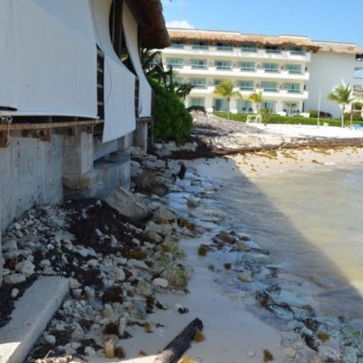 Sargazo y erosión afectan las playas de Solidaridad, donde todavía no hay plan de acción contra estos fenómenos