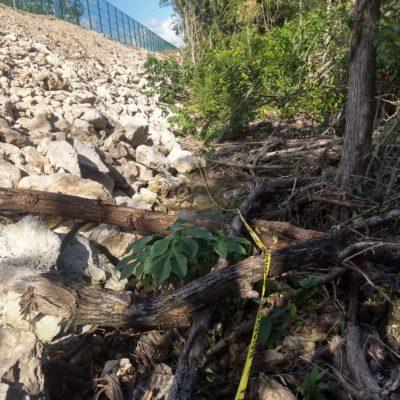 Profepa y autoridades locales inspeccionan relleno de cenote realizado por CADU en 'Villas las Perlas'