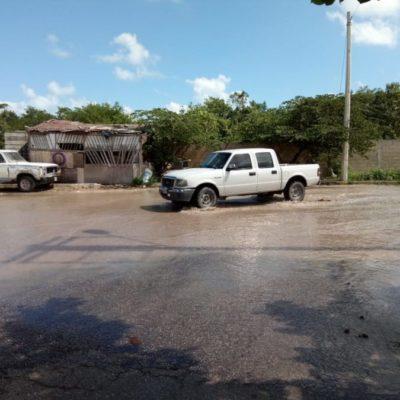 Ruptura de tubería de aguas negras en la Región 237 provoca contaminación a manglar