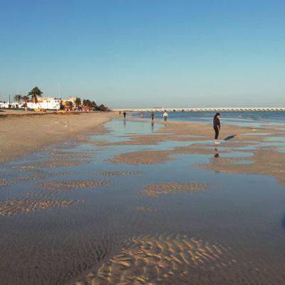 VACIANTE MARINA CAUSA TEMOR: Se aleja el mar de la playa en el malecón de Progreso, Yucatán