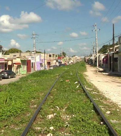 TREN MAYA ES UNA DECISIÓN TOMADA: Beneficio social compensa el impacto ambiental, dice Fonatur