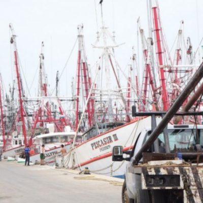 Reconocen que flota camaronera de Campeche compra, ocasionalmente, combustible ilegal