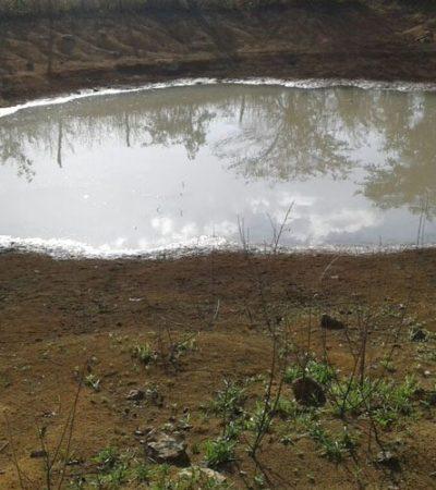 Afecta sequía al 60% de la Península de Yucatán