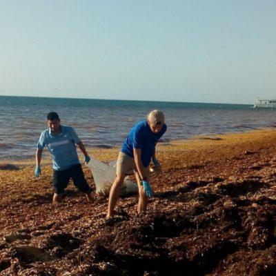 """Brigadas del proyecto """"Yo quiero a Cancún"""", realizan limpieza en la playa Coral, donde hay mayor acumulación de sargazo"""