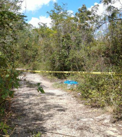 Hallan cadáver de un hombre de la tercera edad a un costado de la Portillo, a la altura de las antiguas instalaciones del bar Chilly Willis de Cancún
