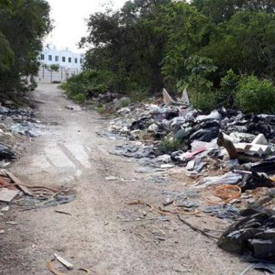 Detectan 20 basureros clandestinos en Playa del Carmen; hasta el momento se han detenido a cuatro personas involucradas