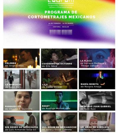 CUORUM MORELIA LLEGA A QR: alistan ciclo de películas de diversidad sexual en Chetumal y Bacalar