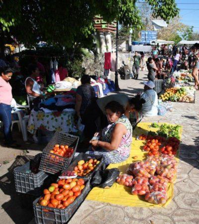 Con la primera cosecha de jitomate en Leona Vicario, gobierno de Puerto Morelos refuerza acciones a favor de productores del campo