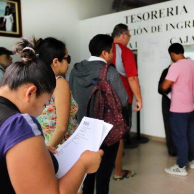 Amplían plazo a para tramitar licencias de funcionamiento en Puerto Morelos