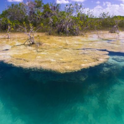 Preocupa a ambientalista desplazamiento turístico hacia Bacalar a consecuencia del sargazo en las playas y que aumentará con el proyecto Tren Maya