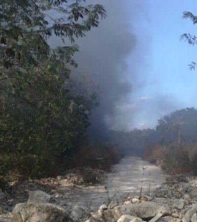 Surgen dos nuevos incendios de maleza en Playa del Carmen