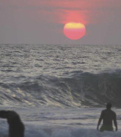 Ataca tiburón a turista estadounidense en Guerrero mientras surfeaba