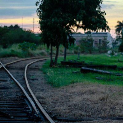 Afirma Alejandro Moreno que Yucatán está en el Tren Maya 'gracias' a Campeche