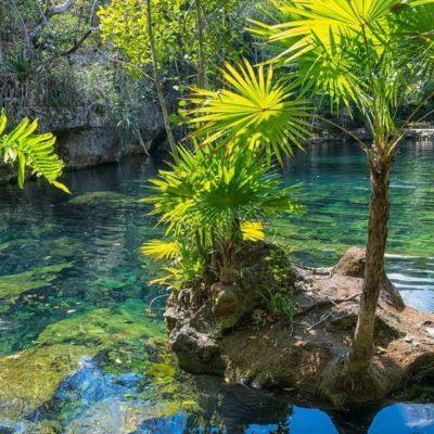 LA PENÍNSULA DE YUCATÁN TIENE UN TESORO: Posee la cuarta parte del volumen nacional de agua