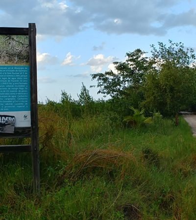 Anula juez decreto de área natural protegida en tierras ejidales