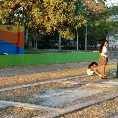 Hallan cadáver de un hombre en zoológico 'Payo Obispo' de Chetumal