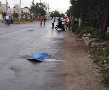 Mata conductor de combi de la TTE a una niña de seis años en Villas Otoch Paraíso en Cancún