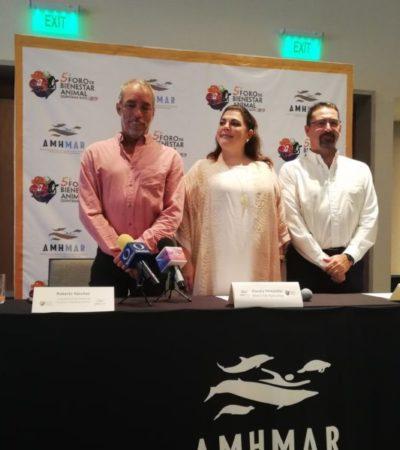 Para sensibilizar a la población sobre el cuidado de los animales, invitan al Foro de Bienestar Animal en Cancún