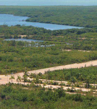 Ambientalistas alistan denuncia por desacato por Tajamar