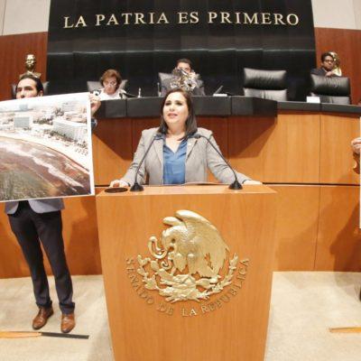 """""""RECALE DE SARGAZO ESTÁ ADQUIRIENDO TONOS DE DESASTRE"""": Presenta Senadora iniciativa para reformar el marco legal para enfrentar contingencia por llegada del alga a playas mexicanas"""