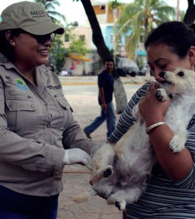 INVITA AYUNTAMIENTO DE ISLA MUJERES A VACUNAR A SUS MASCOTAS: Miles de gatos y perros podrán ser vacunados de manera gratuita contra la rabia en diversos puntos del municipio