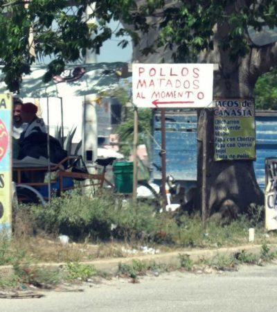 INVASIÓN DE ÁREAS COMUNES EN PASEOS DE LAS PALMAS: Comerciantes se apoderan de camellones y espacios públicos en Cancún