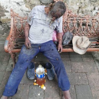 Muere persona de la tercera edad por ataque de abejas africanas en calles de Orizaba, Veracruz