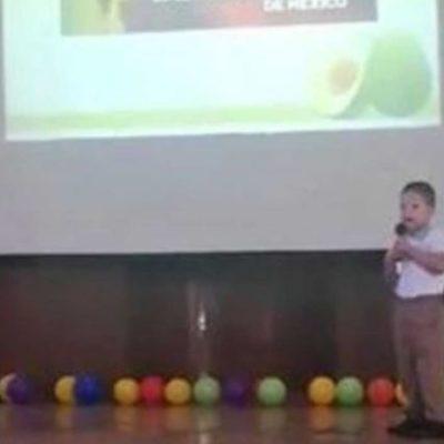VIDEO | Niño de apenas cuatro años expone sobre 'aguacates' como todo un experto