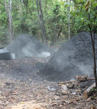 Productores de carbón vegetal en Lázaro Cárdenas no pueden llegar a los hoteles de Cancún y la Riviera Maya por falta de permisos de la Semarnat
